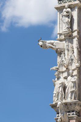 Cathédrale de Sienne Les gargouilles